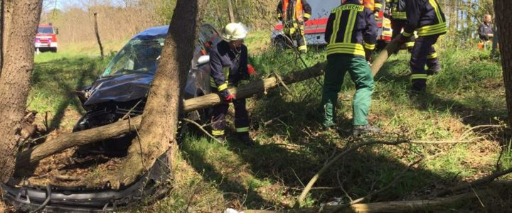 Einsatz 09/2017 (30.04.17): VU-mit Personenschaden – PKW gegen Baum