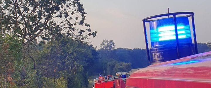 Einsatz 15/2019 (30.06.19): Brand:Wald